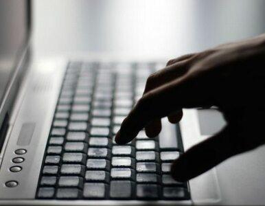 """E-maile rozsyłała grupa """"Anonimo""""? """"To był protest przeciwko działaniom..."""