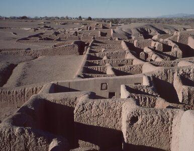 Setki kolorowych papug na środku pustyni. Archeolodzy wyjaśnili zagadkę...