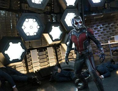 """Wschodząca Afroamerykańska gwiazda w filmie """"Ant-Men 3"""". Kogo zagra?"""