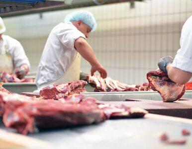 FBI jest pewne. Za atak na największego przetwórcę mięsa na świecie...