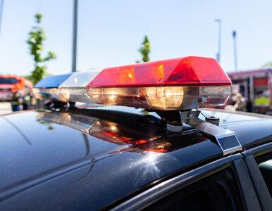 Przerażające odkrycie policjantów. Para trzymała dzieci w klatkach i...