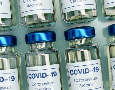 Naukowcy mają dobre wieści. Odporność na COVID-19 jest lepsza, niż nam...