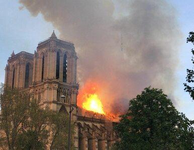 Płonące katedry. Uderzenie w stereotyp o przeciwieństwie religii i nauki