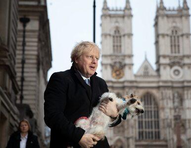 Wybory w Wielkiej Brytanii. Na okładkach brytyjskich gazet… Johnson z psem