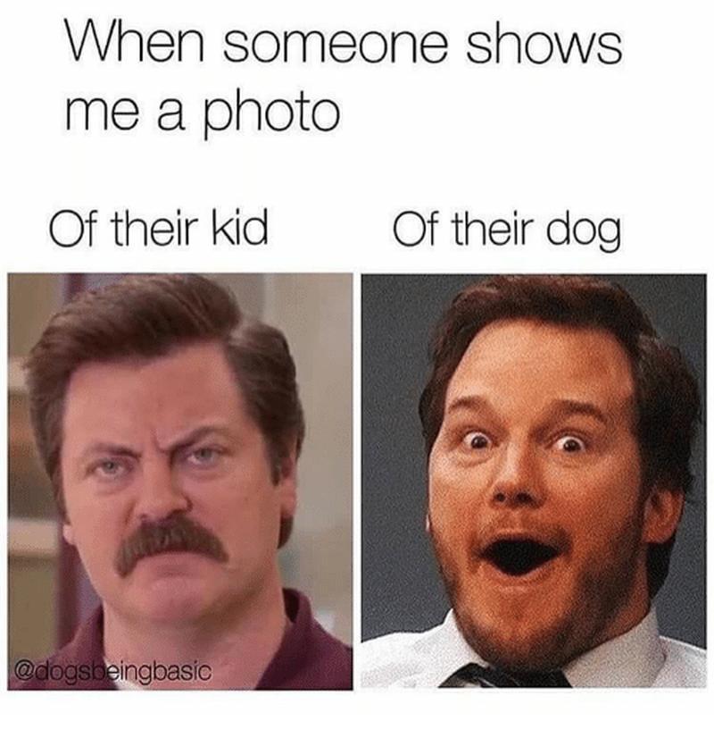 Kiedy ktoś pokazuje mi zdjęcie swojego: dziecka/psa