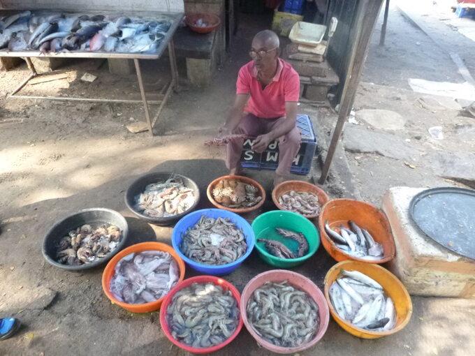 Indie -targ zrybami