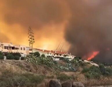 Setki ewakuowanych, ogromne pożary na Sardynii. Francja i Grecja...