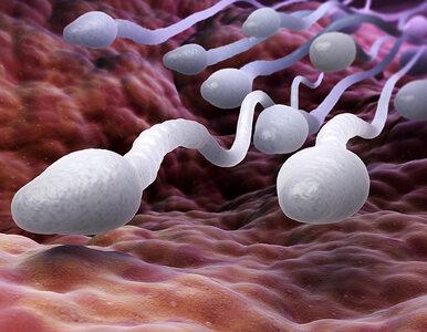 Nowa metoda antykoncepcji dla kobiet niszczy... plemniki. Zastąpi...