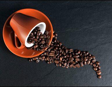 Jak kawa wpływa na układ trawienny