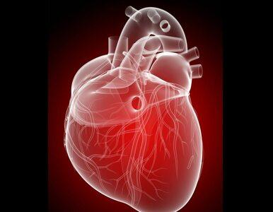 Kardiologia XXI wieku. Bioresorbowalne stenty naczyniowe