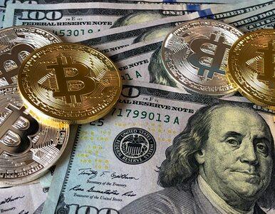 Gdzie się najbardziej opłaca wymiana walut – online, czy tradycyjnie?
