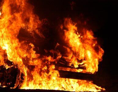 Cena pożarów w Rosji - 15 mld dolarów