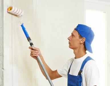 Rysy na ścianach w mieszkaniu - jak się ich pozbyć?