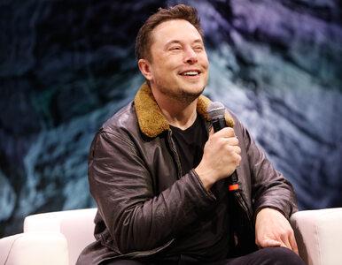 Elon Musk uderza w Marka Zuckerberga. Przyłączył się do akcji...