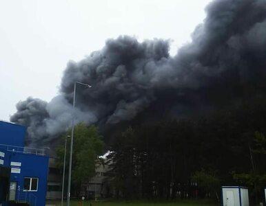 Pożar w Elektrowni Bełchatów. Premier dziękuje za akcję, konieczne...