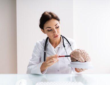 Neurolog – co to za lekarz i jakie wykrywa choroby?