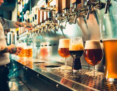 Czy piwo zawiera gluten?