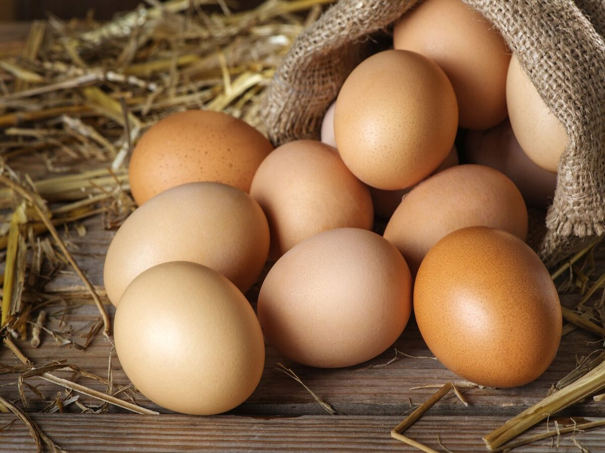 Jajka Jajka