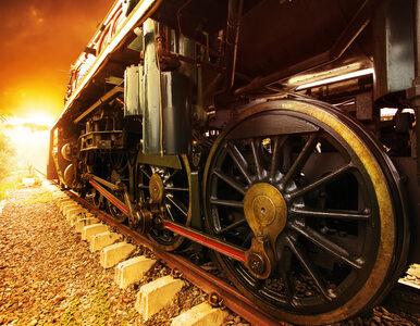 Złoty pociąg. Na 65. kilometrze odkryto anomalie termiczne