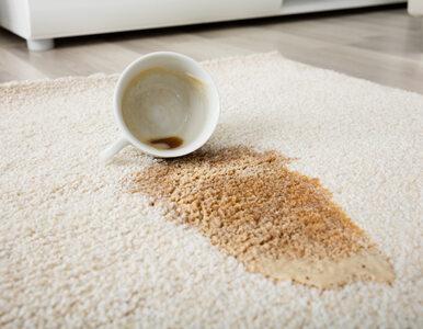 Oblałaś kawą ulubioną bluzkę lub dywan? Oto, jak prosto usuniesz te plamy