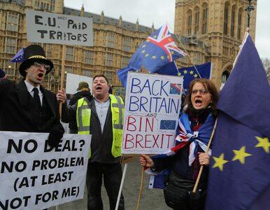 """Drugie referendum ws. brexitu? """"Politico"""" dotarło do rządowych dokumentów"""