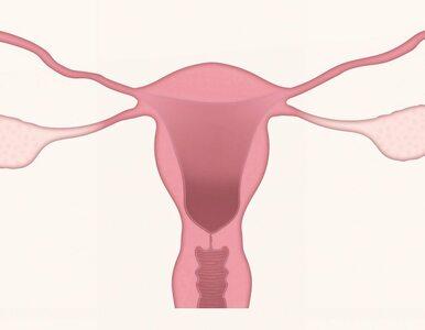 Niewydolność jajników a ciężkie objawy menopauzy. Naukowcy znaleźli...