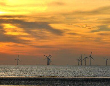 Jest zielone światło dla morskich wiatraków na Morzu Bałtyckim: na...