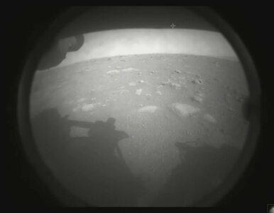 """Pierwsze zdjęcia z Marsa wykonane przez Perseverance. """"Moje spojrzenie..."""""""