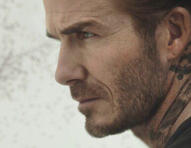 """David Beckham """"zaatakowany"""" przez rój komarów. O co chodzi?"""