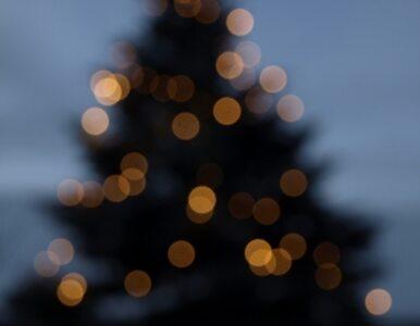Boże Narodzenie po polsku - wśród rodziny