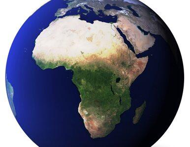 Ebola zabija w Gwinei. Senegal zamyka granice