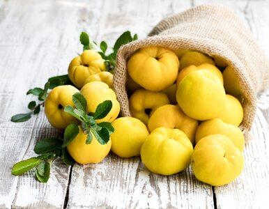 Pigwa to polska cytryna, która wzmacnia odporność. Jak zrobić nalewkę z...