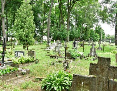 Olsztyn. Wandale zniszczyli około 50 dziecięcych nagrobków