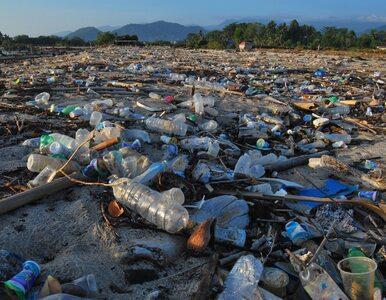 """NIK: Duże zaniedbania w gospodarowaniu odpadami. """"Działania..."""