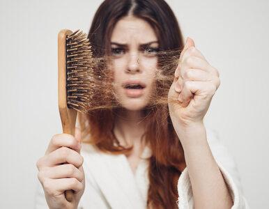Stres może powodować wzmożone wypadanie włosów. Naukowcy ujawnili,...