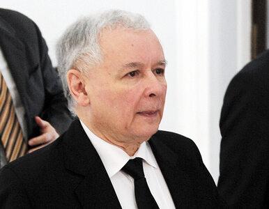 Prezes PiS: oddanie śledztwa niszczy nas i degraduje