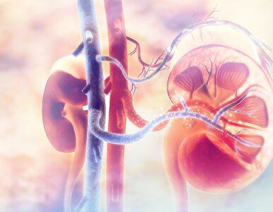Nowe odkrycie medyczne może pomóc 700 milionom ludzi na świecie. Dotyczy...