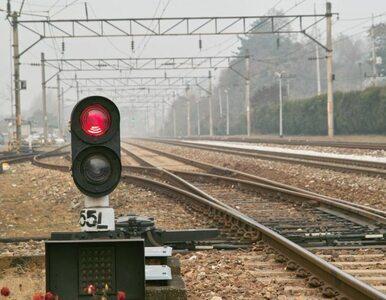 Woj. śląskie: wykoleił się pociąg. Sieć trakcyjna zerwana