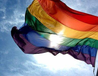 Petersburg: kary za promowanie homoseksualizmu