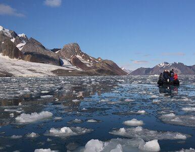Naukowcy nie mają dobrych wieści. Svalbard się topi