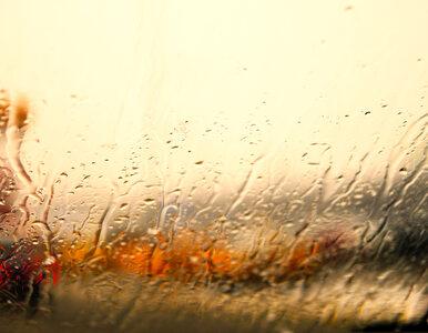 Ulewne deszcze na Śląsku. Drogi są zalane