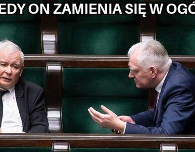 Jarosław Gowin odchodzi, ale zostaje. Tylko memy mogą to wyjaśnić