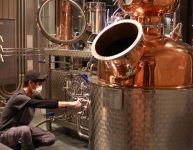 Rzemieślnicze browary zamieniają niesprzedane piwo w gin, żeby alkohol...