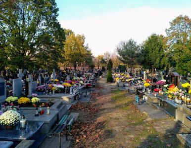 Zaduszki. Czy dziś cmentarze będą otwarte?