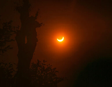 NA ŻYWO: Zaćmienie Słońca. Oglądaj na kamerach NASA