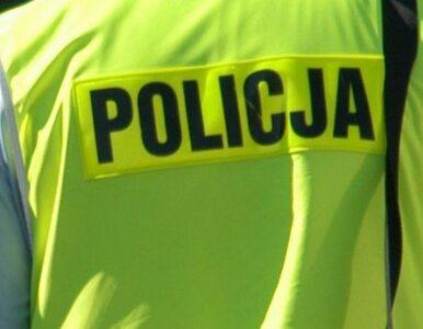 Bielsko-Biała: zobaczył policjantów i... się poddał