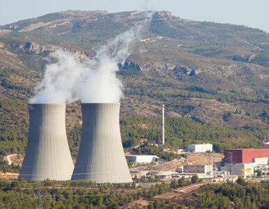 """""""Niemieccy Zieloni straszą Europę wizją chmury radioaktywnej znad..."""