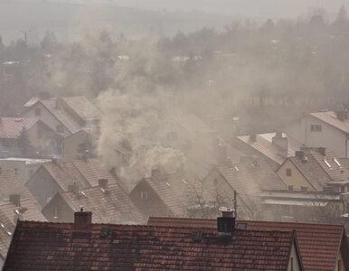 Wracają problemy ze smogiem. W kilku miejscach normy przekroczone nawet...