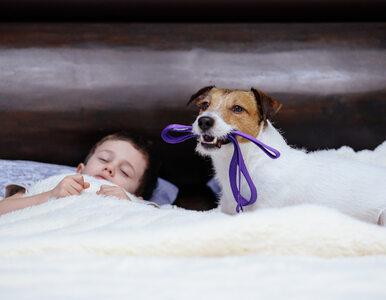 Co daje dziecku spacer z psem?