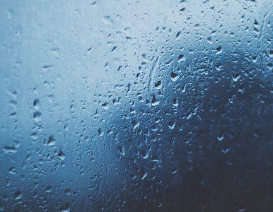 Niedziela pochmurna i deszczowa. W kolejnych dniach ochłodzi się